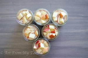 Apple_peanutbutter_overnight_oats-4