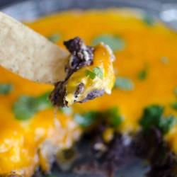 black bean cheese dip on a tortilla chip with dish of dip in the background