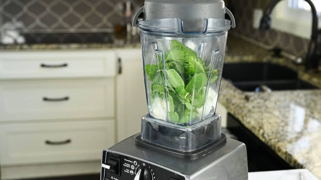 vanilla ice cream, fresh mint leaves in a blender
