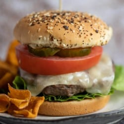 juicy burger topped with cheese, lettuce, tomato and the works on a seeded onion bun